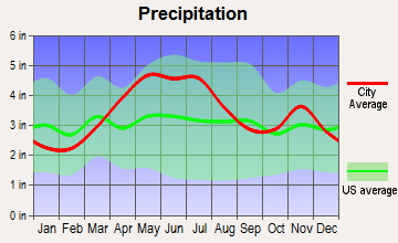 New Castle, Indiana average precipitation