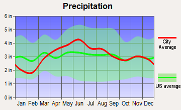 Roanoke, Indiana average precipitation