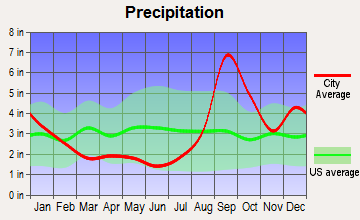Primrose, Alaska average precipitation
