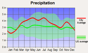 West Terre Haute, Indiana average precipitation