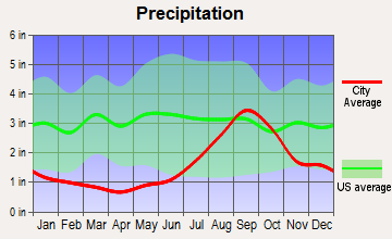 Soldotna, Alaska average precipitation