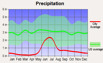Tok, Alaska average precipitation