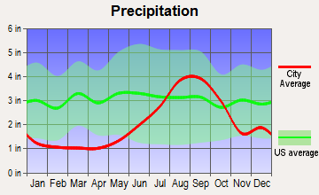 Y, Alaska average precipitation