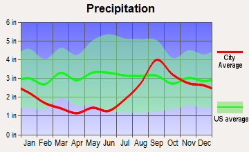 Anchor Point, Alaska average precipitation