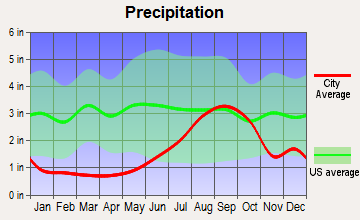 Big Lake, Alaska average precipitation