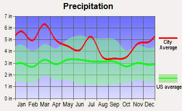 Coker, Alabama average precipitation