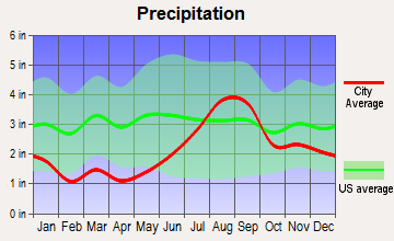 Dillingham, Alaska average precipitation
