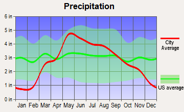 Marion, Kansas average precipitation