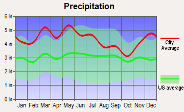 Bradfordsville, Kentucky average precipitation