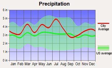 Catlettsburg, Kentucky average precipitation