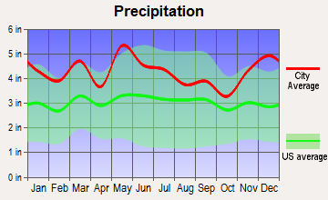Pine Knot, Kentucky average precipitation