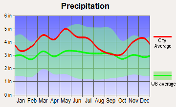 Shepherdsville, Kentucky average precipitation