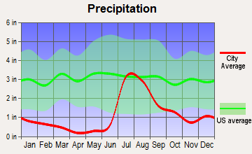 Pirtleville, Arizona average precipitation