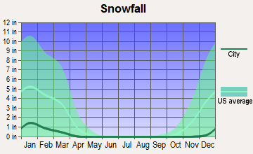Section, Alabama snowfall
