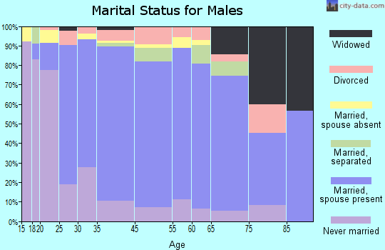 Zip code 00606 marital status for males