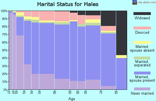 Zip code 00667 marital status for males