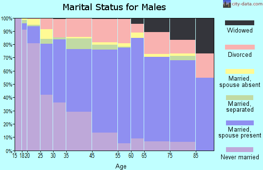 Zip code 00682 marital status for males