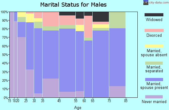Zip code 00741 marital status for males