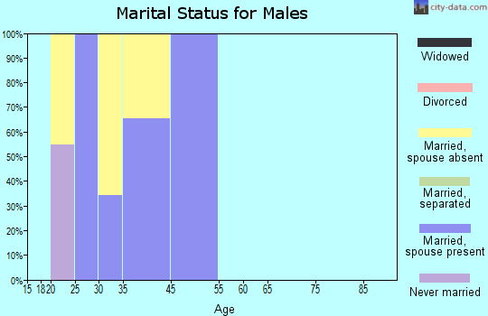 Zip code 00934 marital status for males