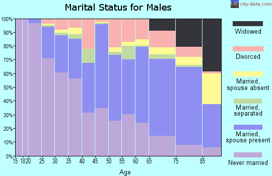 Zip code 01040 marital status for males
