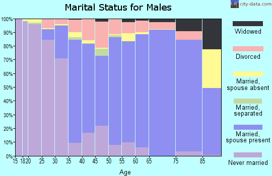 Zip code 01056 marital status for males