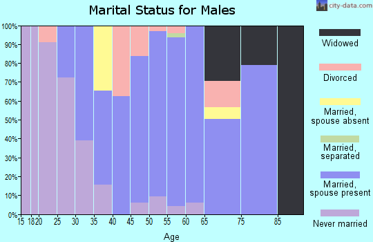 Zip code 01073 marital status for males