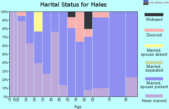 Zip code 01128 marital status for males