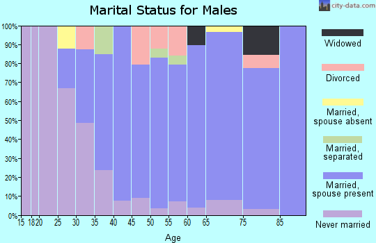 Zip code 01452 marital status for males