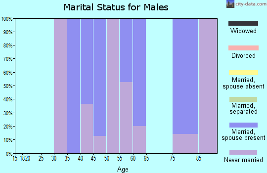 Zip code 01467 marital status for males