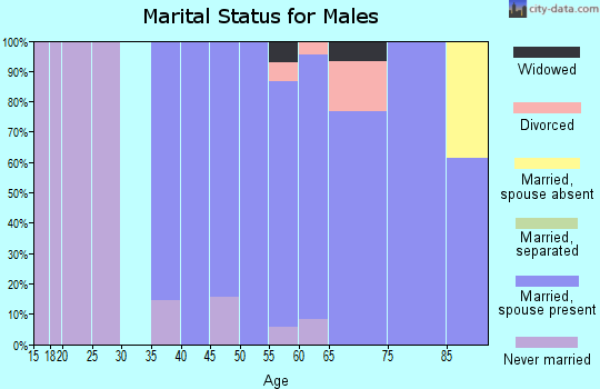 Zip code 01741 marital status for males