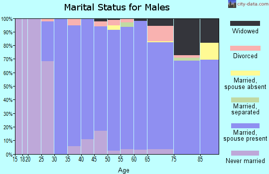 Zip code 01778 marital status for males