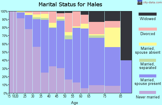 Zip code 01851 marital status for males