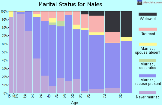 Zip code 01880 marital status for males