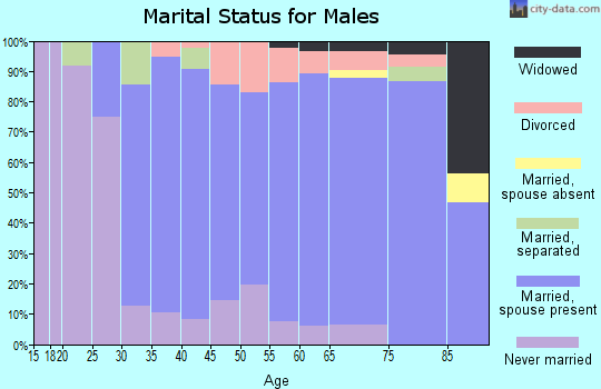 Zip code 01907 marital status for males