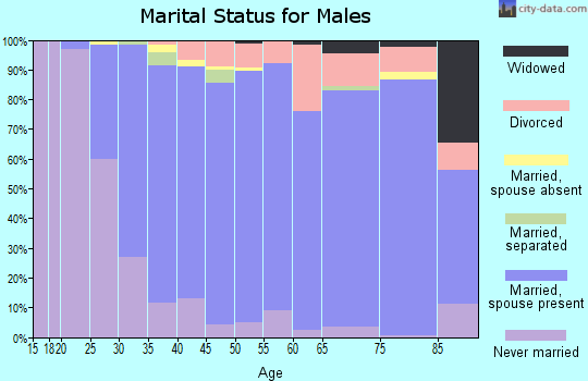 Zip code 02038 marital status for males