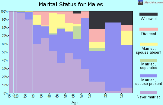Zip code 02134 marital status for males