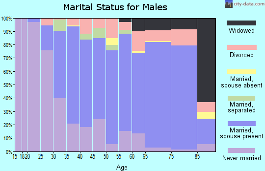 Zip code 02346 marital status for males