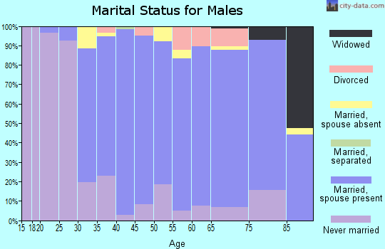 Zip code 02465 marital status for males
