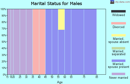 Zip code 02534 marital status for males