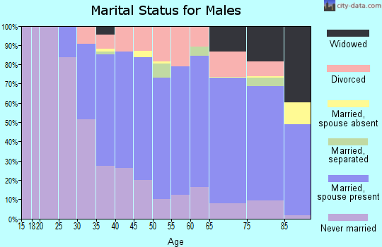 Zip code 02919 marital status for males