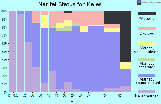 Zip code 03045 marital status for males