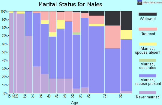 Zip code 03055 marital status for males
