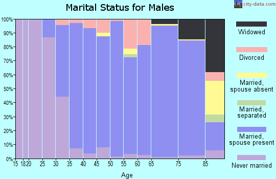Zip code 03110 marital status for males