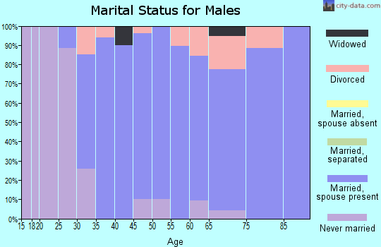 Zip code 03229 marital status for males
