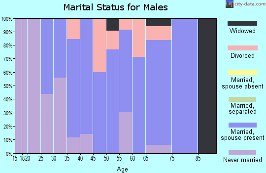 Zip code 03243 marital status for males