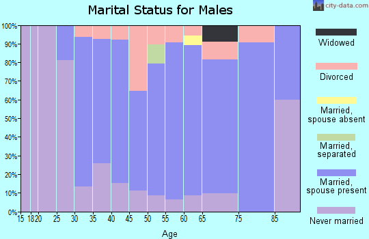 Zip code 03290 marital status for males