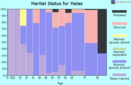 Zip code 03603 marital status for males