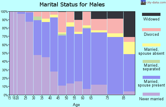 Zip code 03801 marital status for males