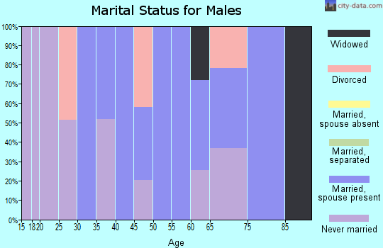 Zip code 03810 marital status for males