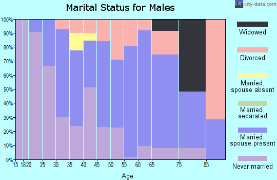 Zip code 03857 marital status for males